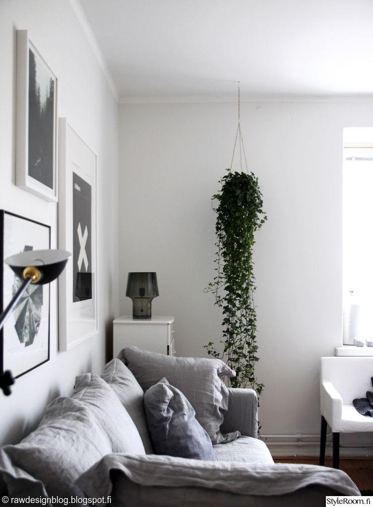 kasvit,muratti,muuto,olohuone,huonekasvi