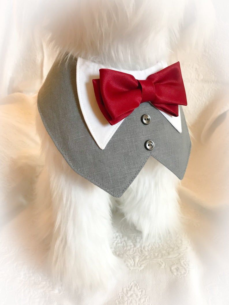 Tuxedo/Tux bib-style bandana for dogs or cats – custom made to order – your choice of colors for linen and satin fabrics