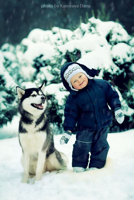 dff3a76b379 Children and dogs. Boy and husky in snow.