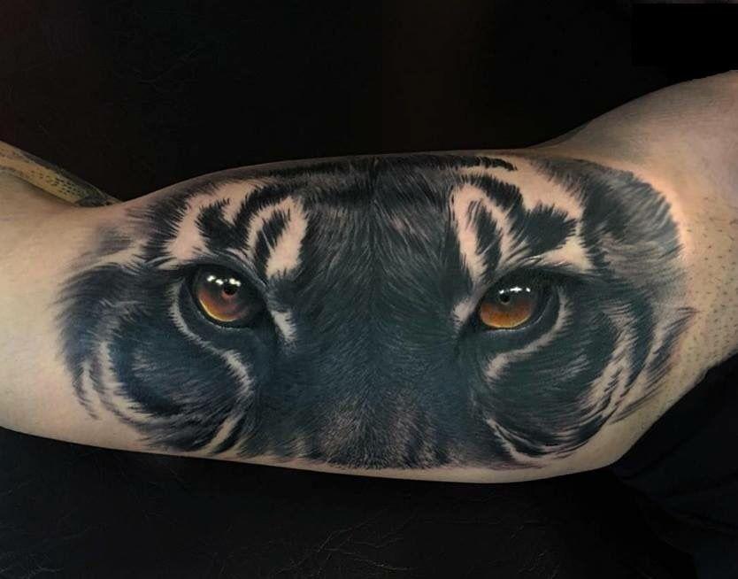 Pin De Joey Diamante En Tats Tatuajes De Animales Cara De Tigre Ojos De Animales