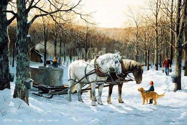 Sleigh Avec Images Cabane A Sucre Cheval Attelage Cheval