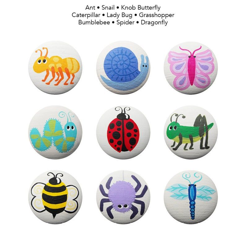 Pin On Animals Insect Rock Ideas
