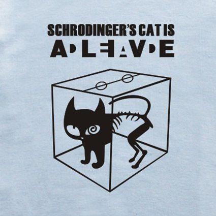 Schrödinger's cat #mattamatica