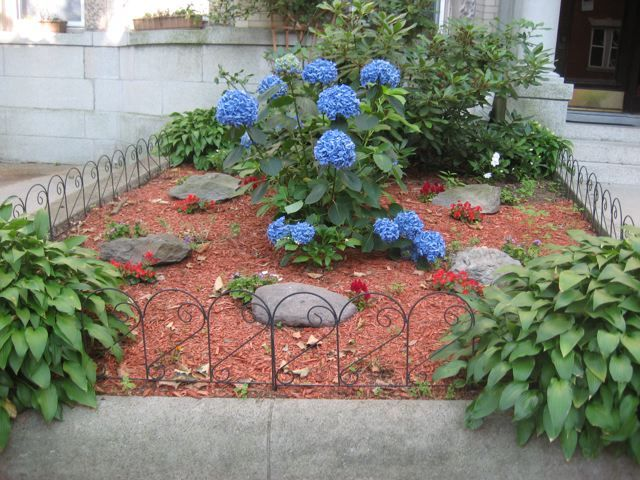 idea landscaping small trees for front yard the boston growing zone is sufficiently warm to - Front Garden Idea