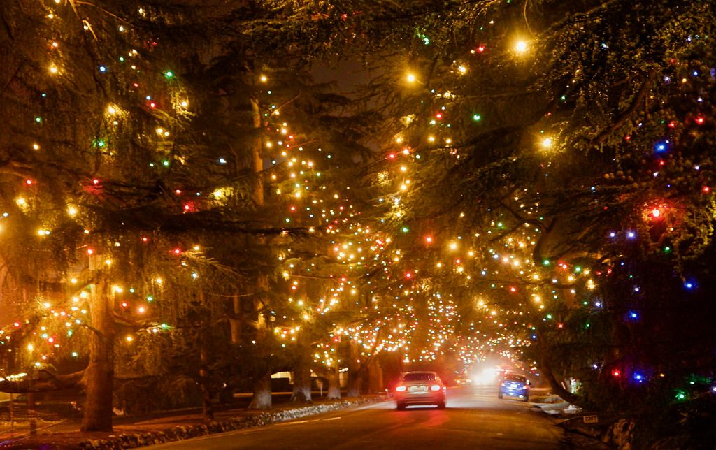 Deodar Christmas Tree Lane Christmas Light Displays Best Christmas Light Displays Best Christmas Lights