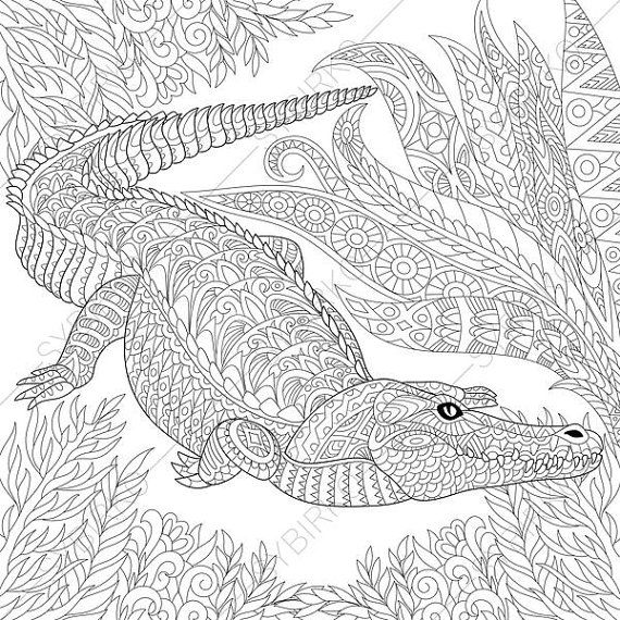 Crocodile Alligator 3 Coloring Pages Animal Coloring