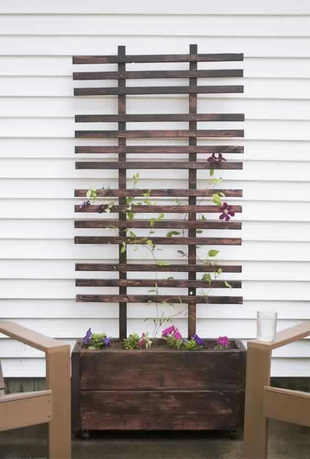 For Creepers Outdoors Pinterest Terrasses Jardins Et Cour