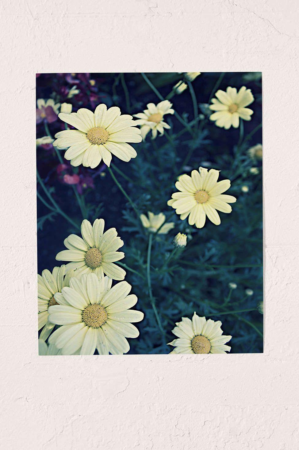 Leah flores flowers polaroid art print polaroid dorm room and