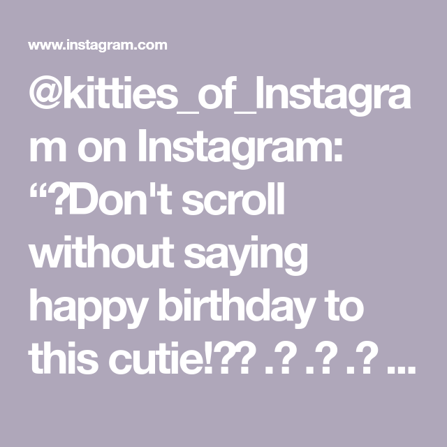 """@kitties_of_lnstagram on Instagram: """"😭Don't scroll without saying happy birthday to this cutie!🎂⠀ .⠀ .⠀ .⠀  #cat #instacat #instacats #meow #instacat_meows #kitty #kittycat…"""""""