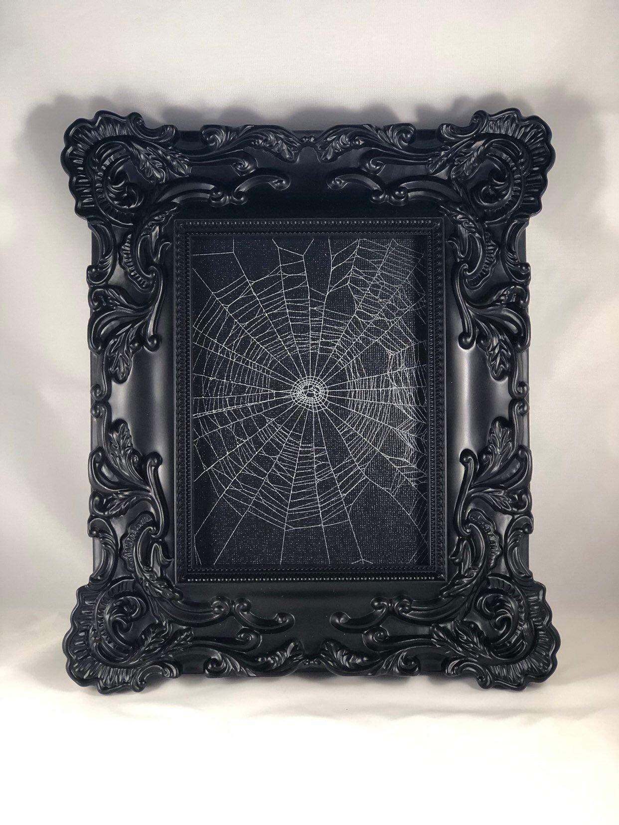 Genuine preserved spider web framed spider web real spider