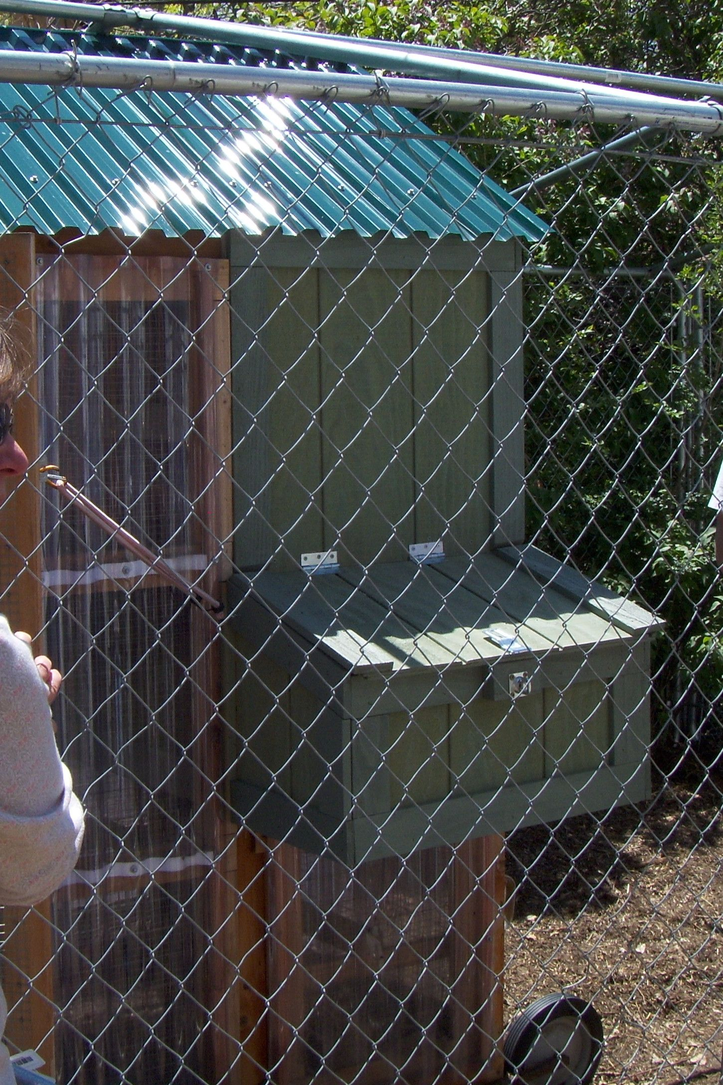 Exterior Finished Nesting Box...behind chain link fence. | Chickens ...