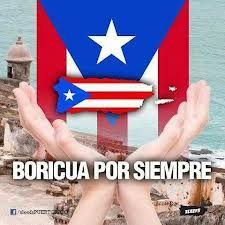 Isla de PR cubierta por la bandera.