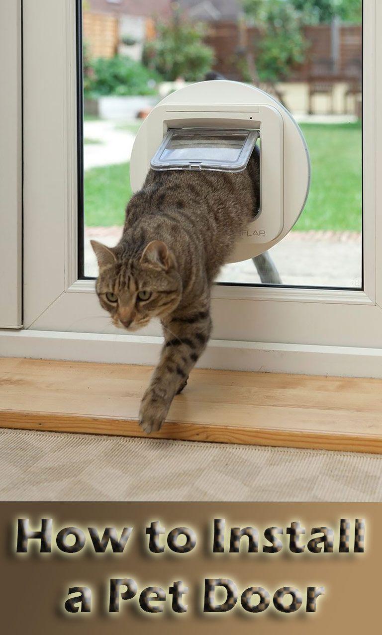 How to Install a Pet Door Pet door, Installation