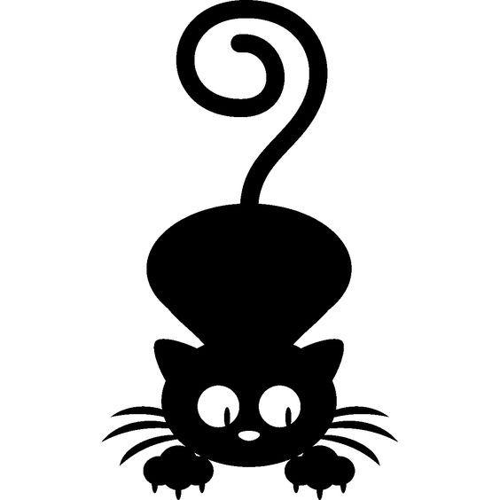 Pin Auf Katzen Beruhigen