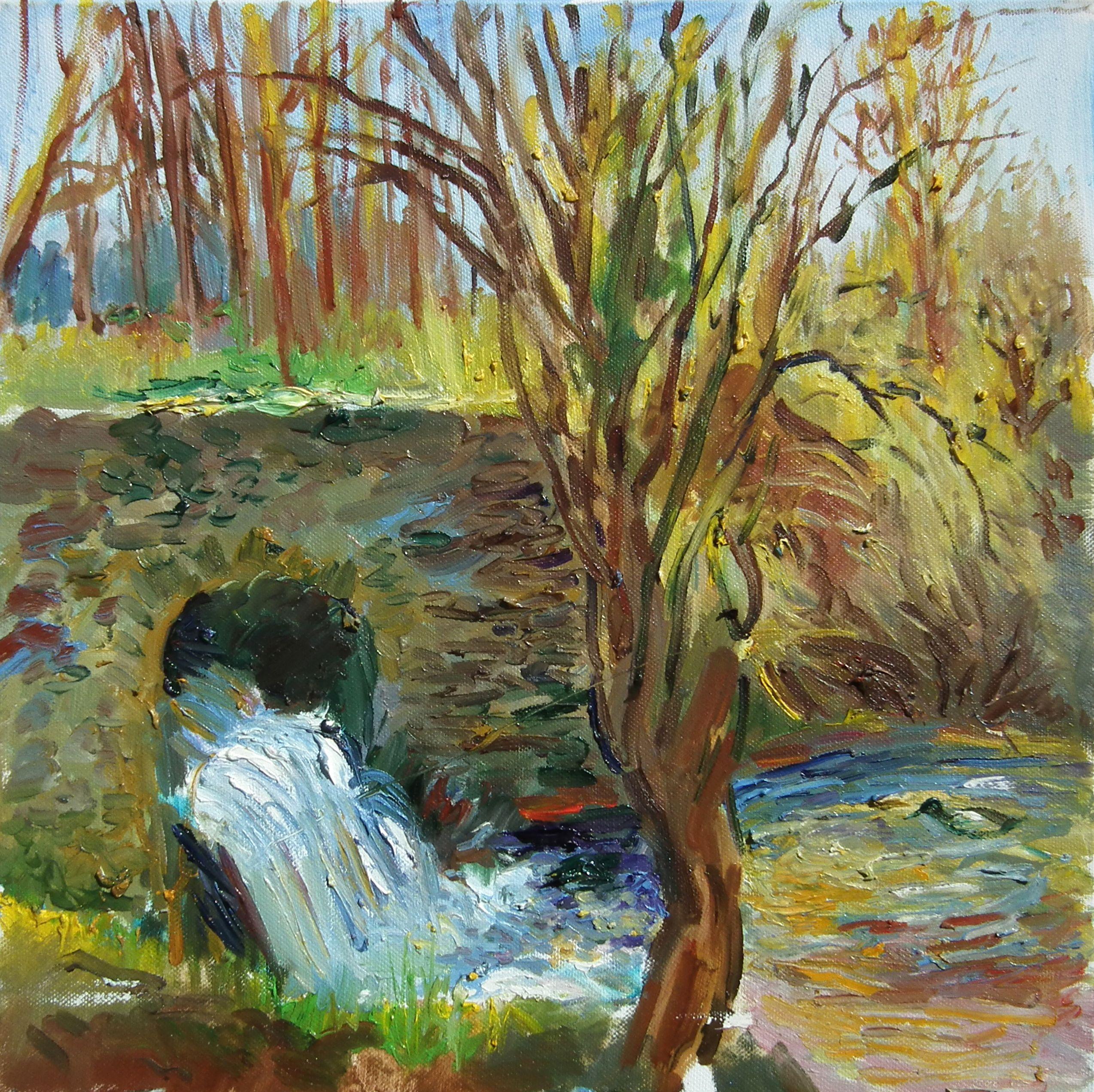 Très Pont, Campagne, automne, feuilles mortes, courant, cascade, eau  VZ46