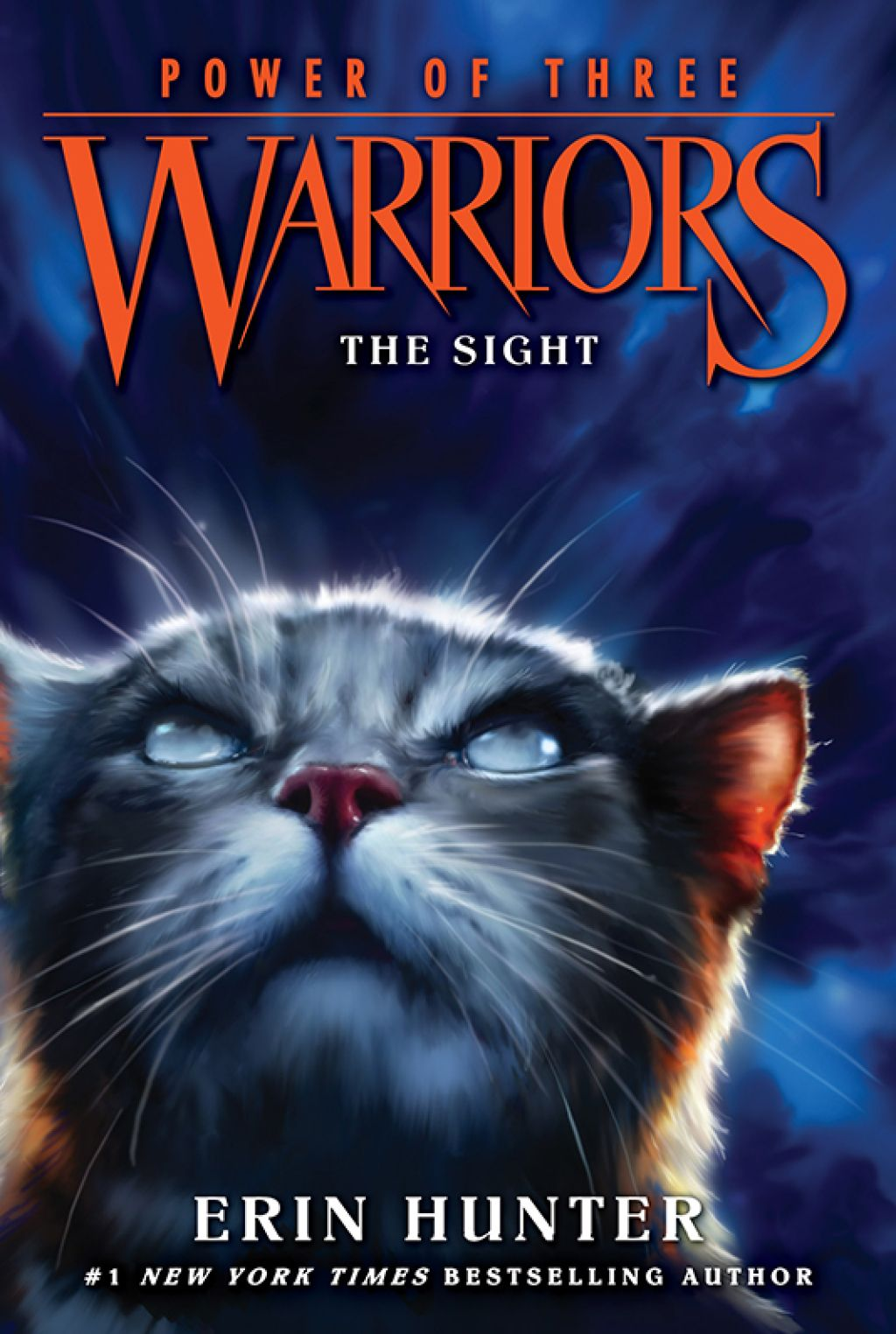 Warriors Power Of Three 1 The Sight Ebook