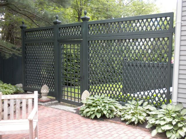 We Could Grow Jasmine Up It All Fence Design Backyard Fences