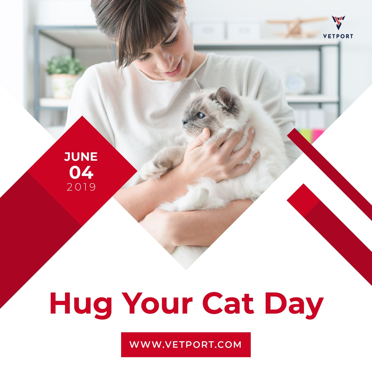 Hug Your Cat Day June 4, 2019 TuesdayThoughts