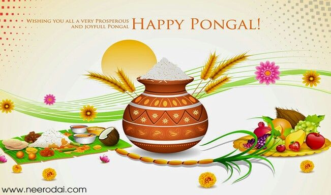 Pongal wishes download free greeting cards and images pinterest best thai pongal wishes greetings tamil quotes hd wallpapers thai pongal wishes quotes messages and greetings tamil kavithai images m4hsunfo