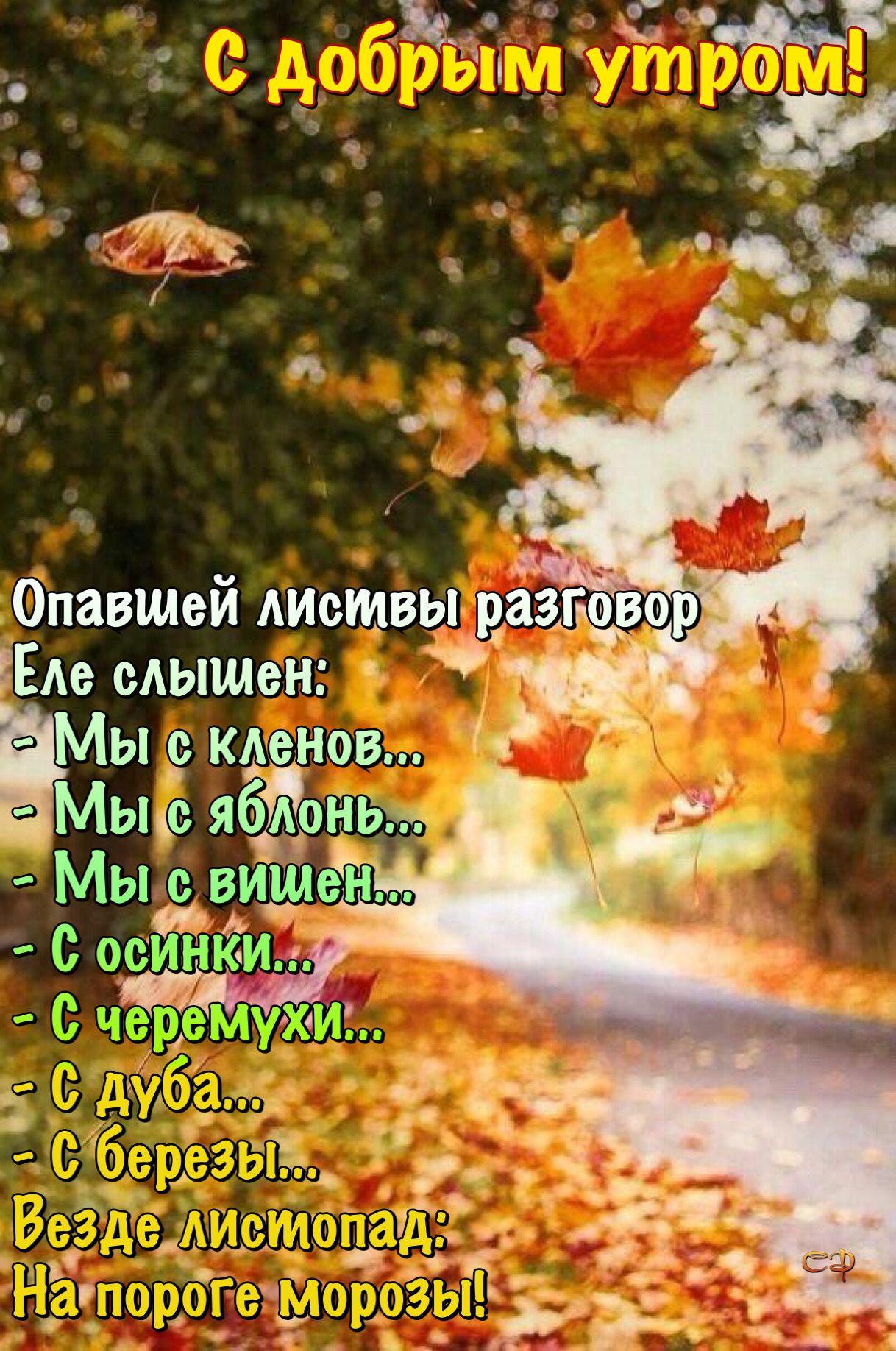 Pin Ot Polzovatelya Natalia Na Doske Otkrytki Dobroe Utro