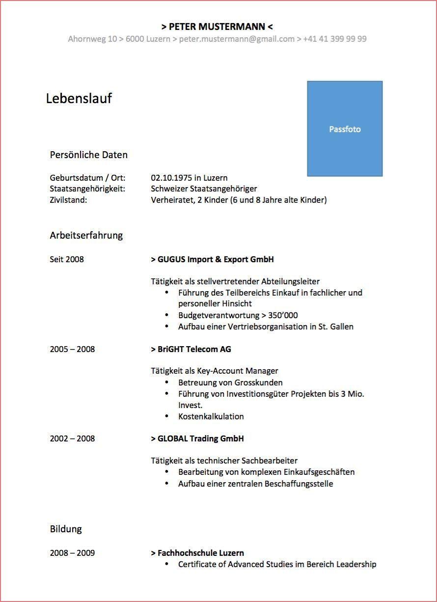 11 Ruhig Lebenslauf Cv Englisch Muster Fotos In 2020 Resume Words Functional Resume Resume Examples