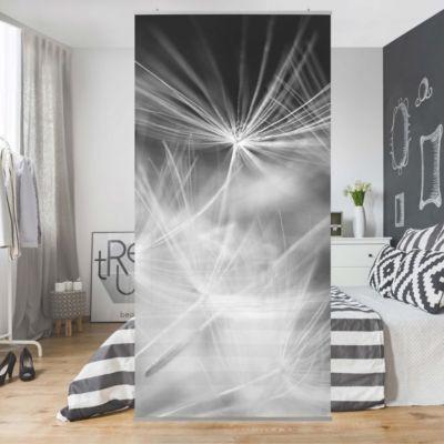 Raumteiler - Bewegte Pusteblumen Nahaufnahme auf schwarzem - wohnzimmer bilder fr hintergrund