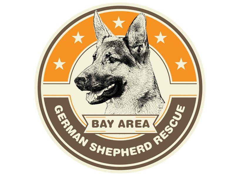Dog Rescue Bay Area Ideas