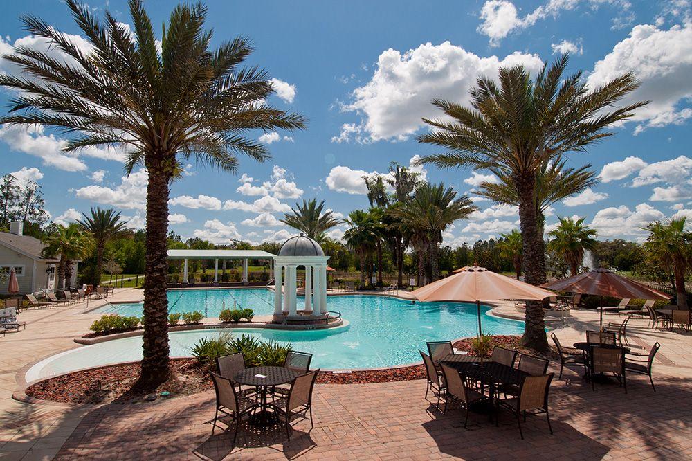Clubhouse Pool pool clubhouse palmtree luxurypool