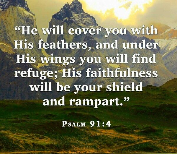 God Will Take Care Of You Bible Verses Bible God Bible Quotes