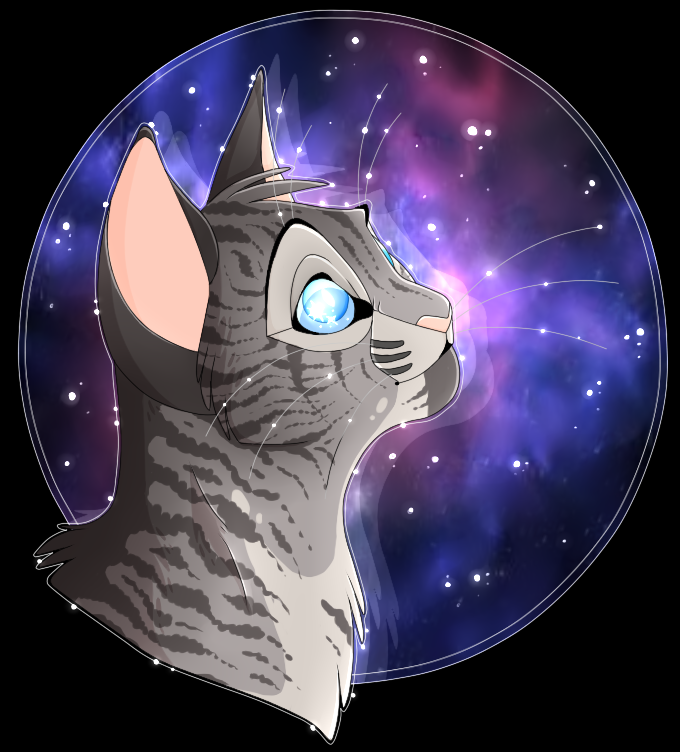Jayfeather With Images Warrior Cats Fan Art Warrior Cats