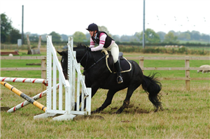 How to rule out refusals | Your Horse | Videos & Advice | Riding Advice | Show Jumping