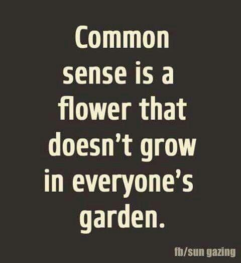 Common Sense Is Becoming Extinct Words Words Of Wisdom Senses