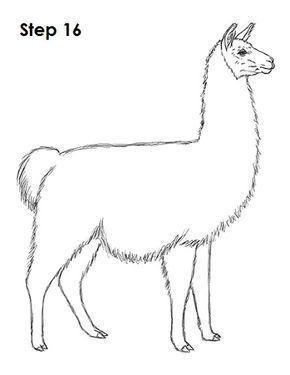 Llama Drawing 16 Quilt Llama Drawing Alpaca Drawing Llama Arts