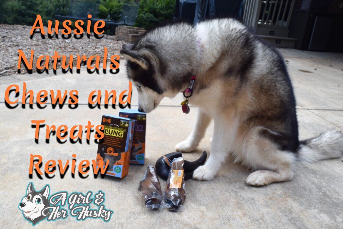Aussie Naturals Chews and Treats Review Pet quotes dog