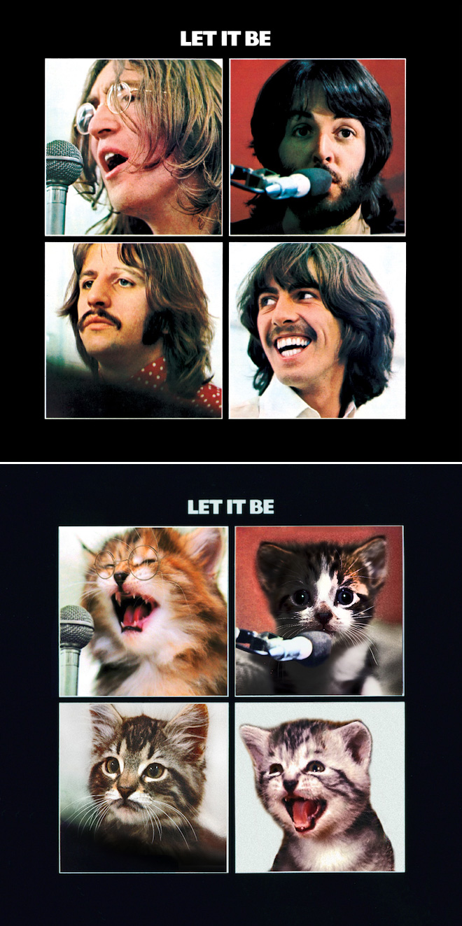 Iconic Album Covers Recreated With Kittens Iconic Album Covers Classic Album Covers Famous Album Covers