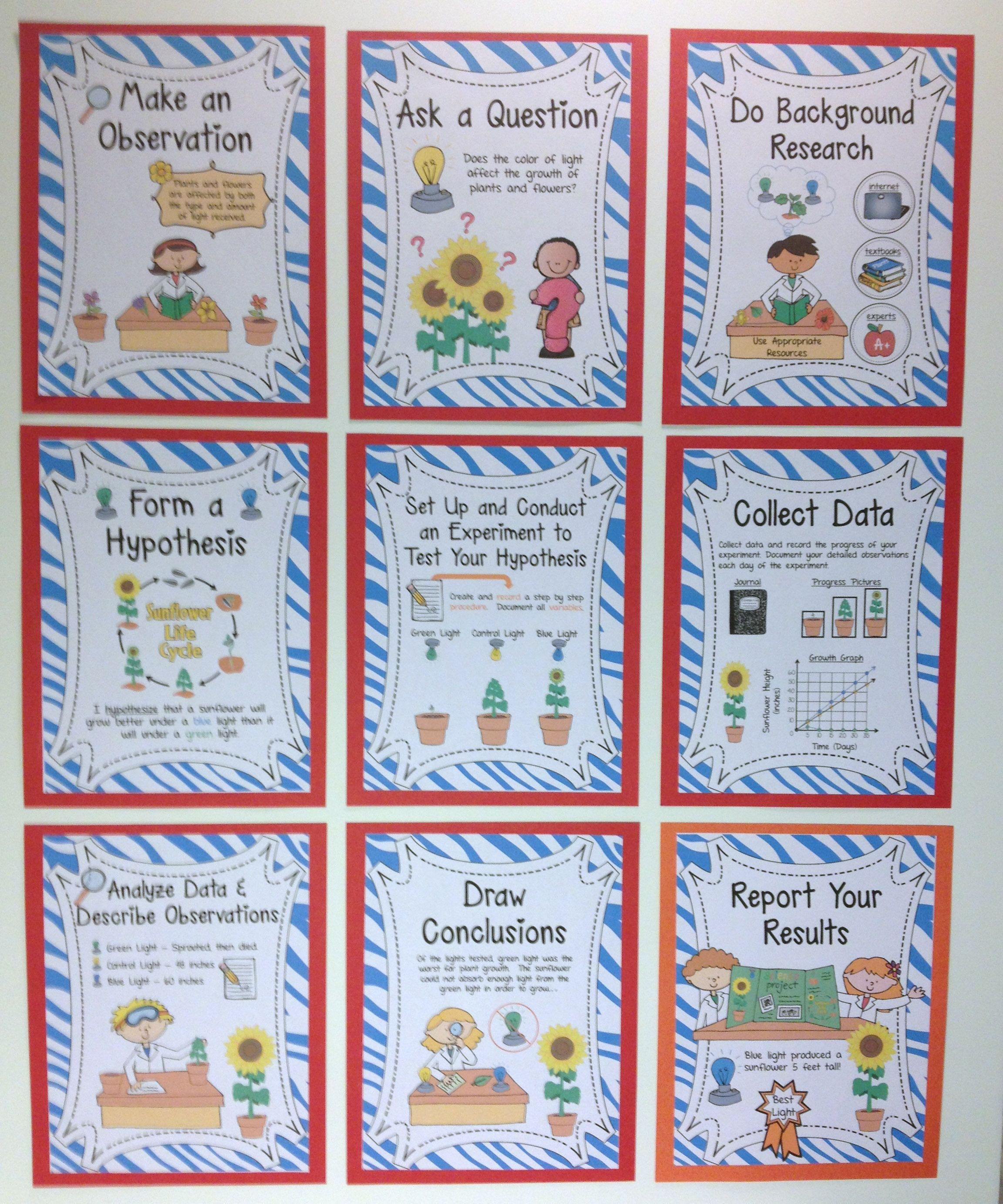 Scientific Method Posters (Sunflower Experiment Themed