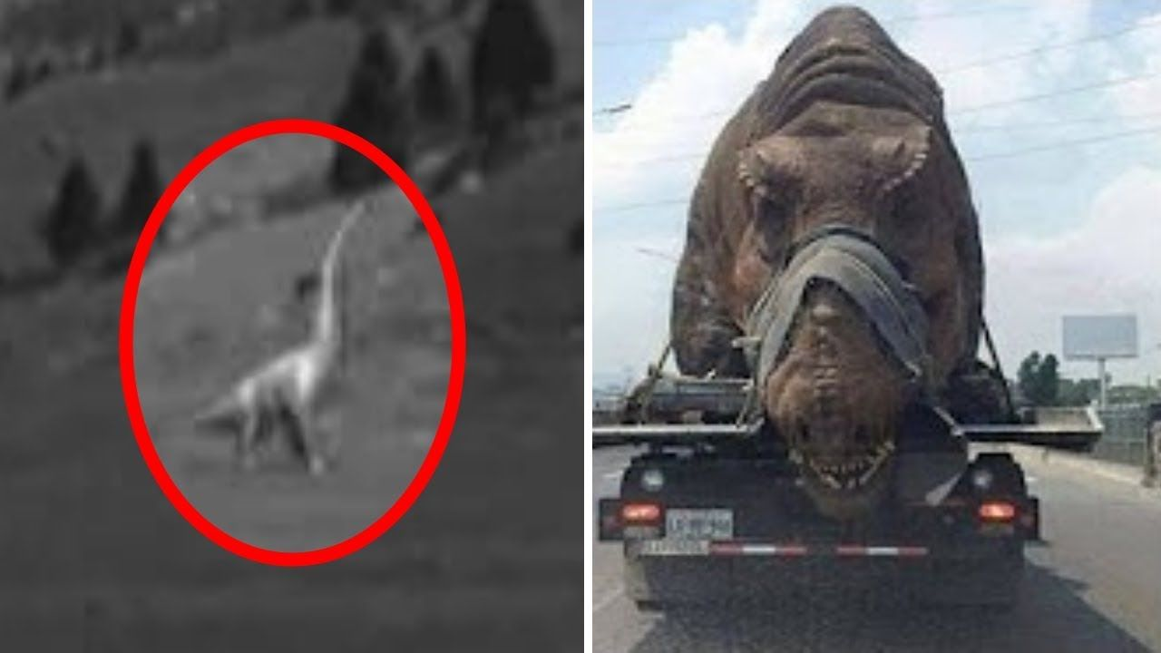 5 Dinosaurs Caught On Camera Spotted In Real Life