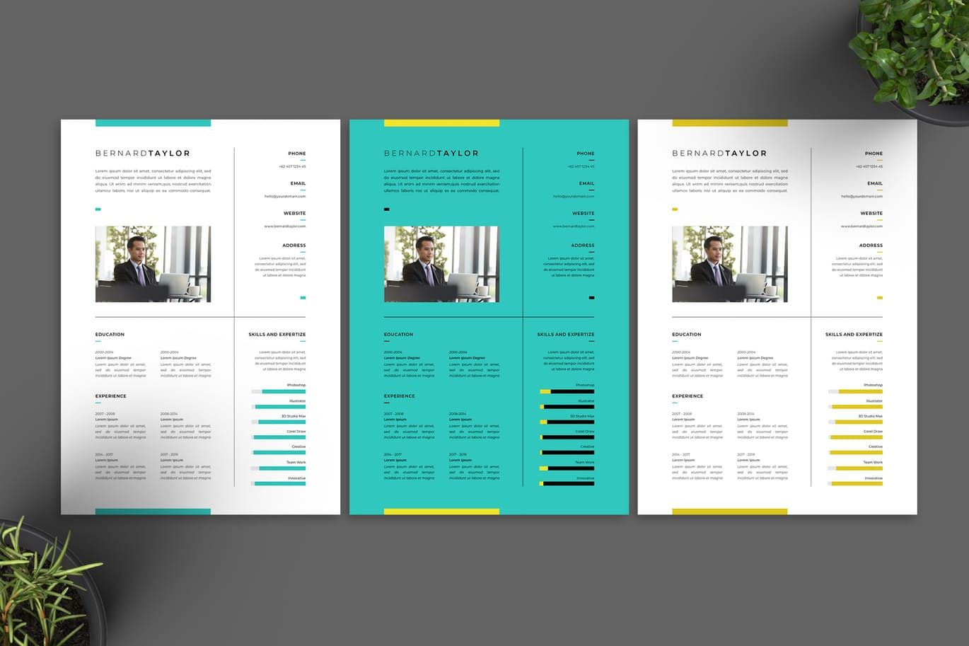 Resume Vol.13 by jiwstudio on Indesign resume template