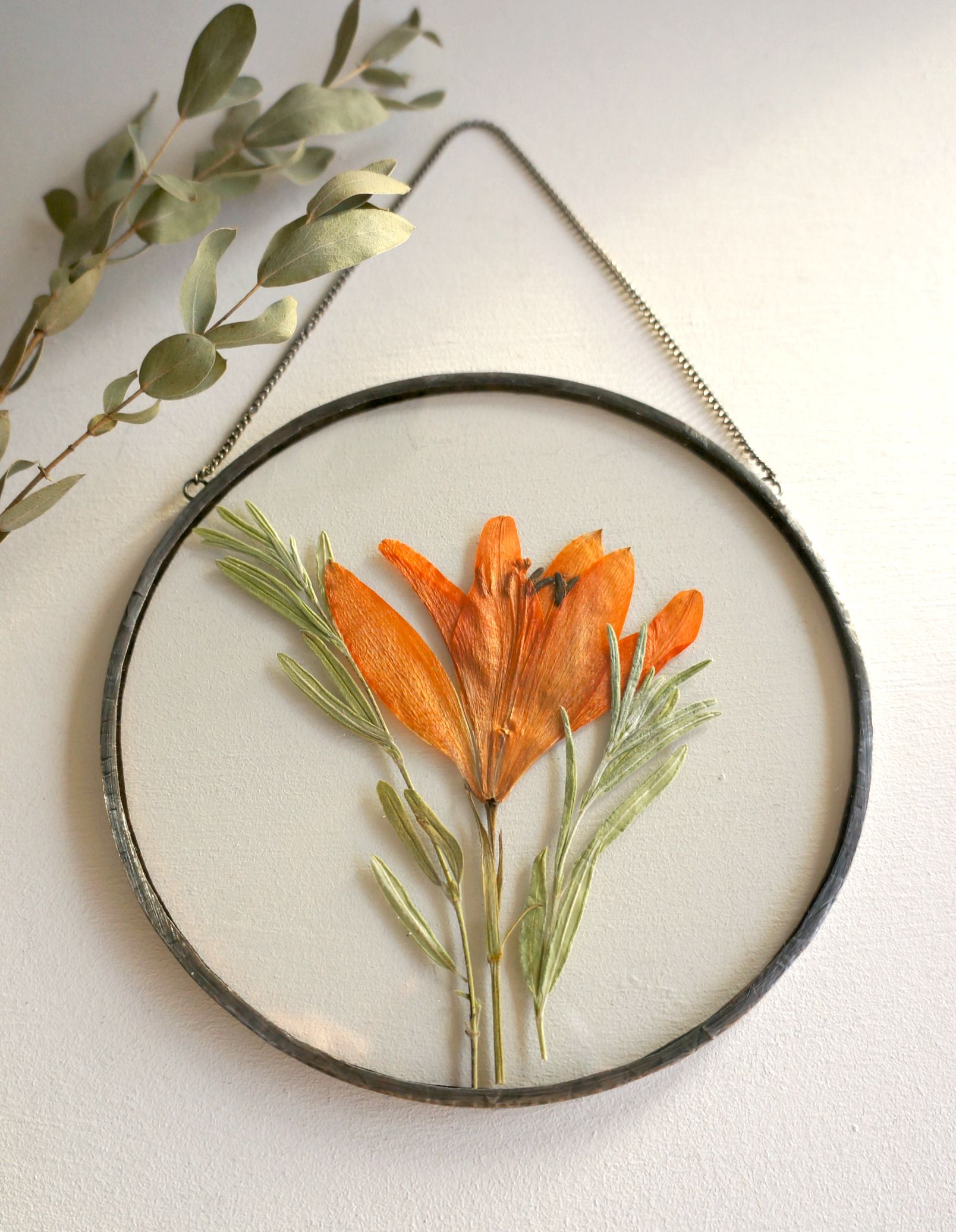 Vintage Pressed Dried Flowers In Circular Glass Frame