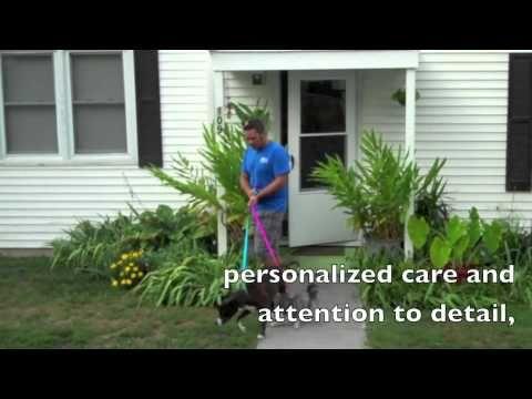 Prestige Pet Sitting Agencies Llc Pet Sitting Dog Walking