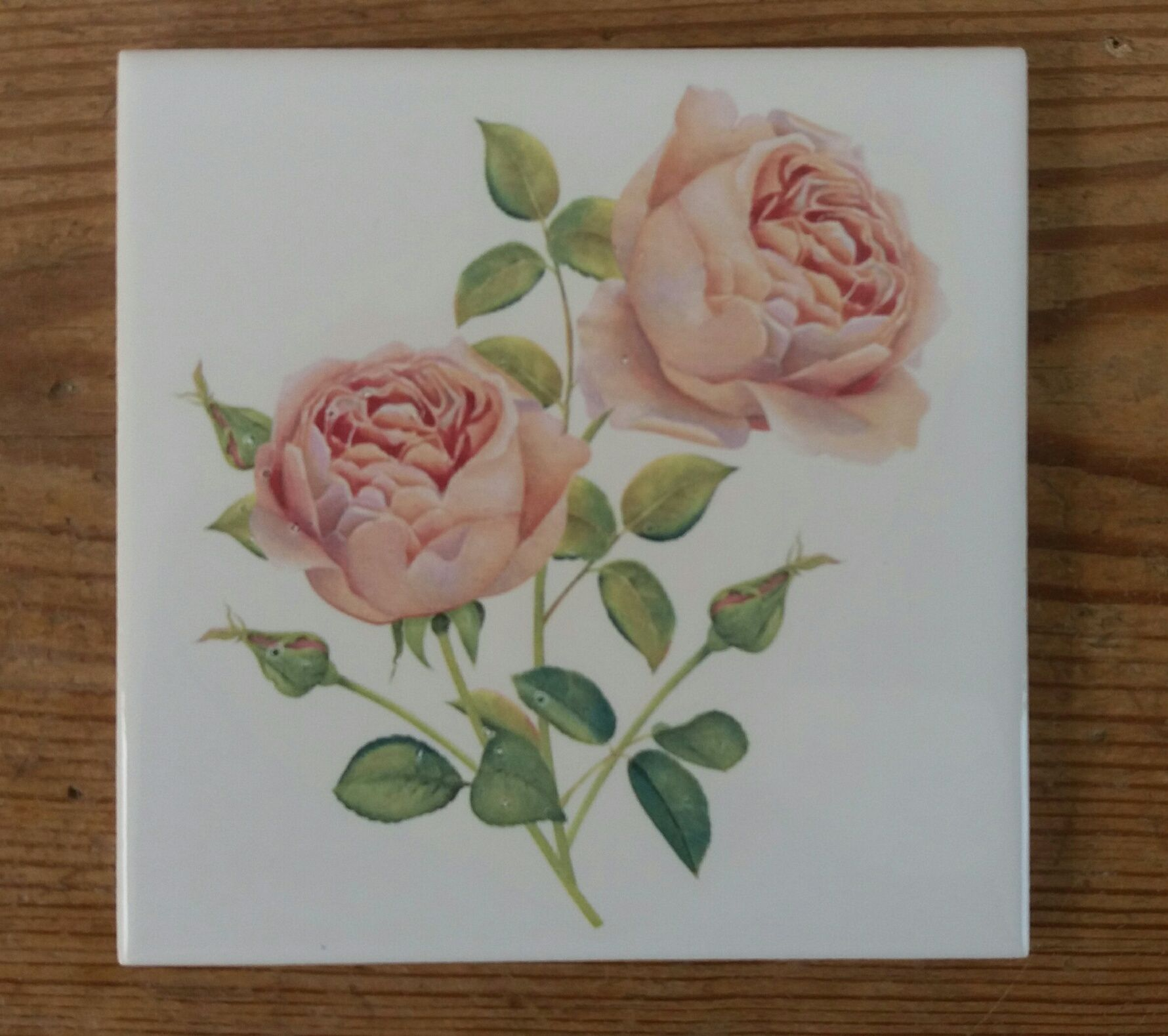 Decorative ceramic wall tile with pink roses by floral tiles decorative ceramic wall tile with pink roses by floral tiles originally a watercolour painting giving a hand painted effect mix and match with some of doublecrazyfo Gallery