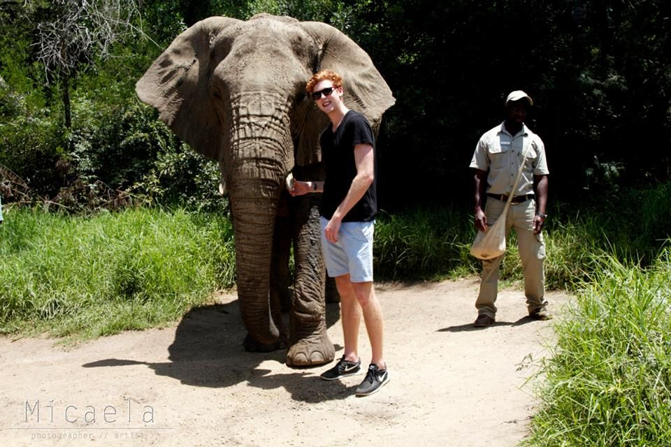 Josh-Pieters-posing-with-elephtant-at-Elephant-Sanctuary-The-Crags-Plettenberg-Bay.jpg (960×640)