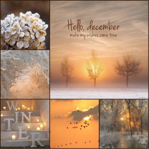 Planche d'inspiration #bonjourdecembre
