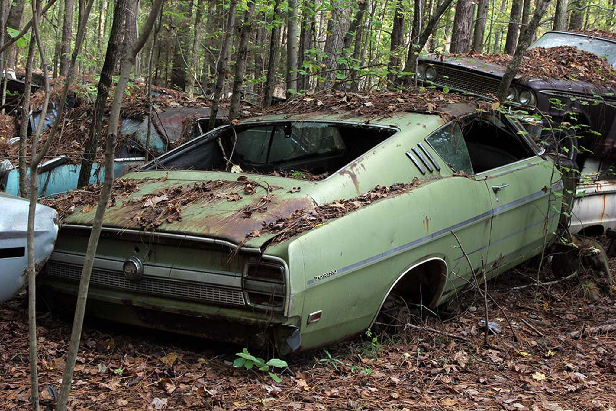 Abandoned Autos Is Full Of Abandoned Muscle Cars And