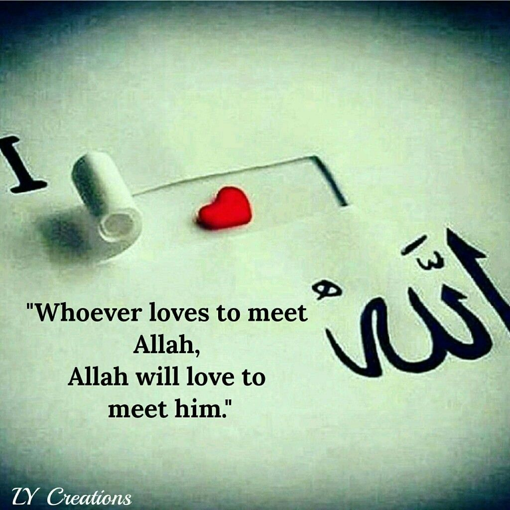 Whoever Loves To Meet Allah Allah Will Love To Meet Him Allah Love Learn Islam Allah Quotes