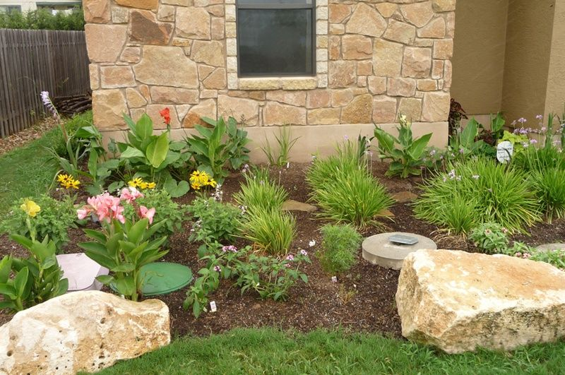 Front yard xeriscape ideas xeriscaped garden in austin for Xeriscaped backyard design
