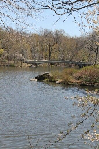 Bow Bridge in Central Park NYC 2016
