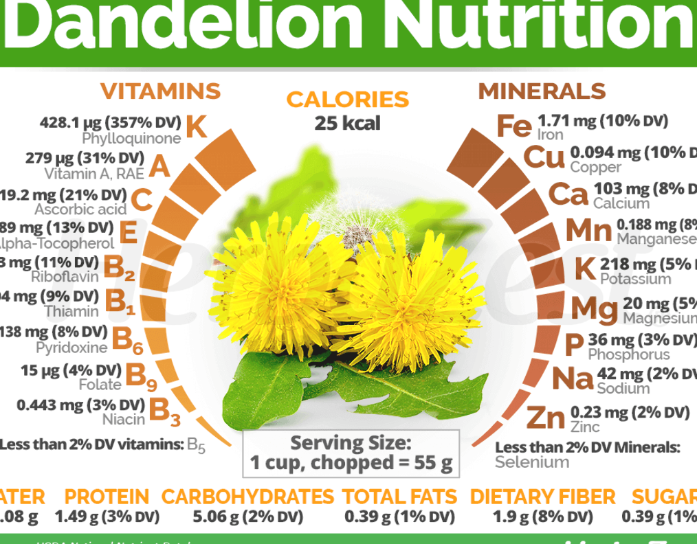 Dandelion Has Garnered Fresh Popularity In Recent Years Thanks To Its Impressive Nutritional Profile Due To Its In 2020 Nutrition Nutrition Tips Health And Nutrition