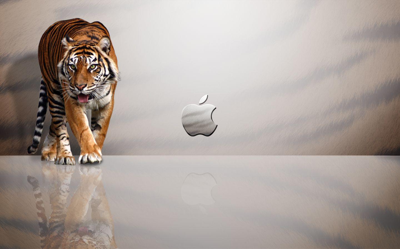 Hd wallpaper for mac - Tiger D Hd Wallpaper For Mac Amazing Wallpaperz Wallpaper Mac Wallpapers
