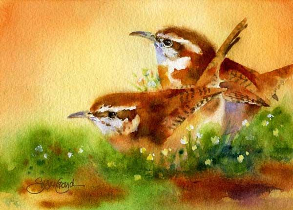 Carolina Wrens in the Morning---Susan Crouch